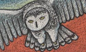 Snowy Owl Over Sumac