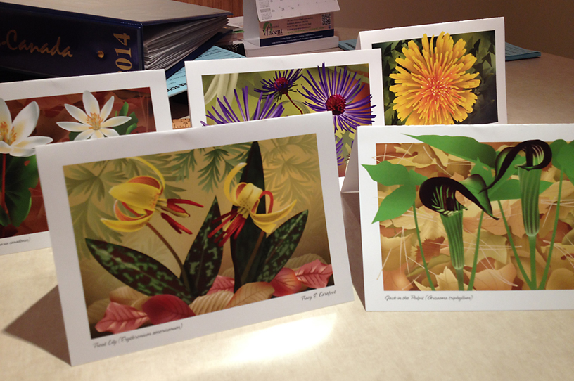 Flower Series Greeting Cards