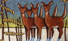 Four Deer and a Beech